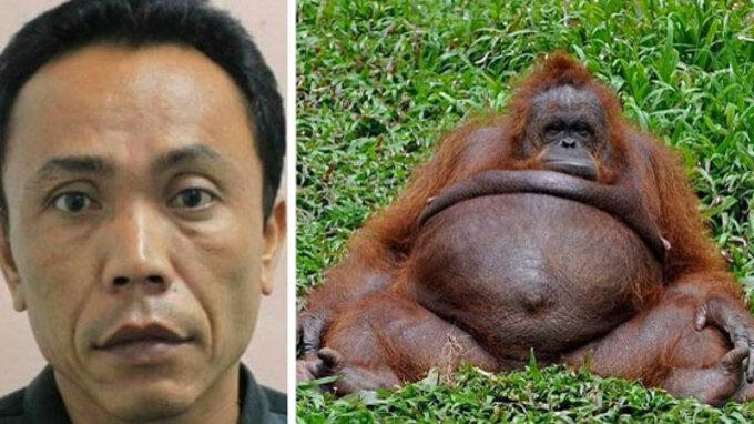 indonesia-pregnant