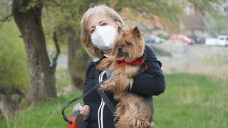 Psi dokáží odhalit člověka s koronavirem.
