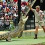 Robert Irwin With Croc At Australia Zoo 124062 Robert Irwin
