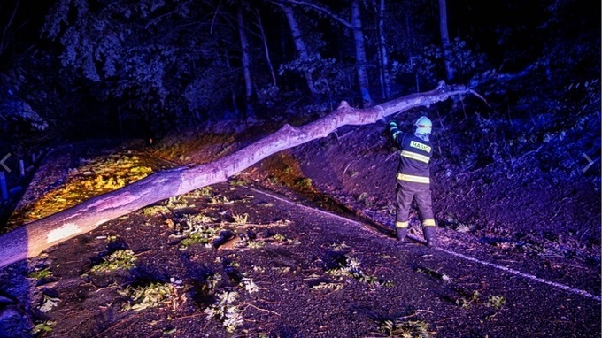Hasiči odstraňovali popadané stromy.