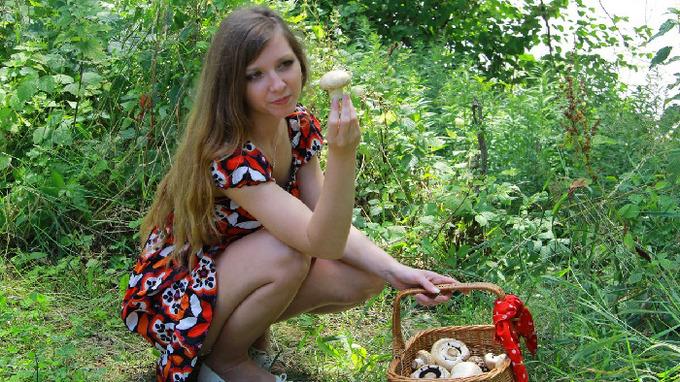 Počasí, houby – Ilustrační snímek